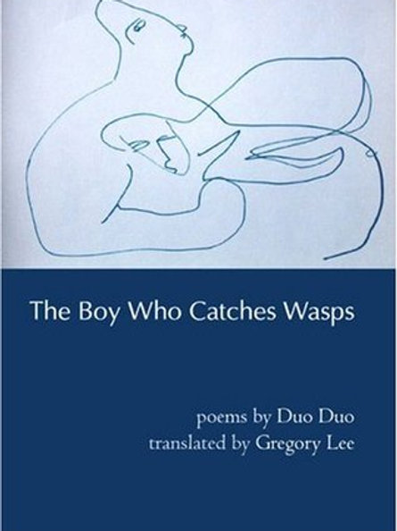 The Boy Who Catches Wasps, by Duo Duo