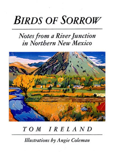 Birds of Sorrow, by Tom Ireland