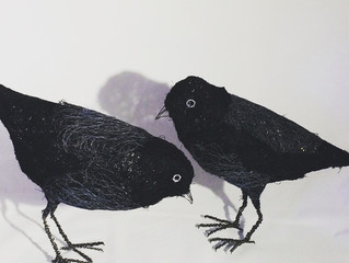 A naughty pair of Jackdaws