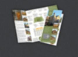 IBSSS-trifold-brochure.jpg