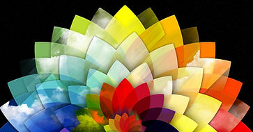 colorful_petals_wallpapers-1280x800 (1).