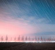 the-night-sky-4051288_960_720.jpg