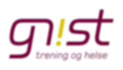gnist_logo_pos1[1] (2).jpg