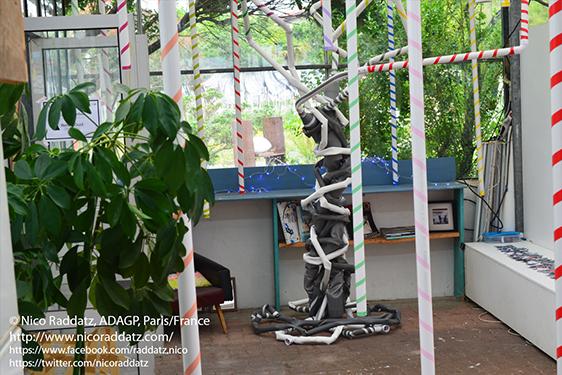 Nico Raddatz / arbre (stase)