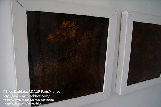 Nico Raddatz / peinture végétale