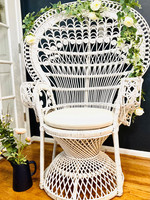 Peacock Chair.jpg
