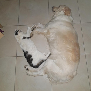 Rex mit bester Freundin ;)