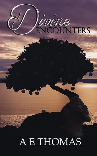Divine Encounters.jpg