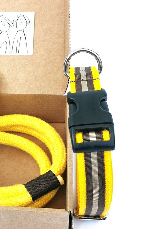 Collare  Giallo STRIPE 15 mm, 20mm o 25mm