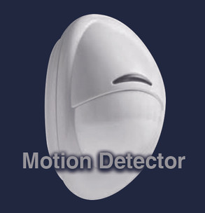 Motion Detector (with text).jpg