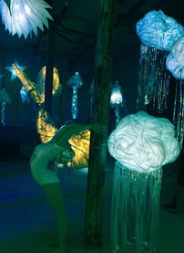 'Autumn Lights' at the Athenaeum