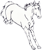 HM-Horse.png
