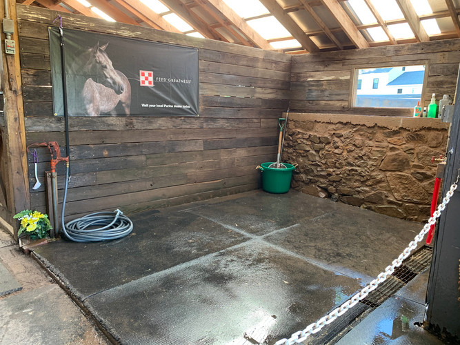 Equus wash stall