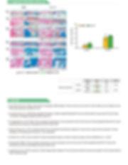 XP_상세페이지_4.jpg
