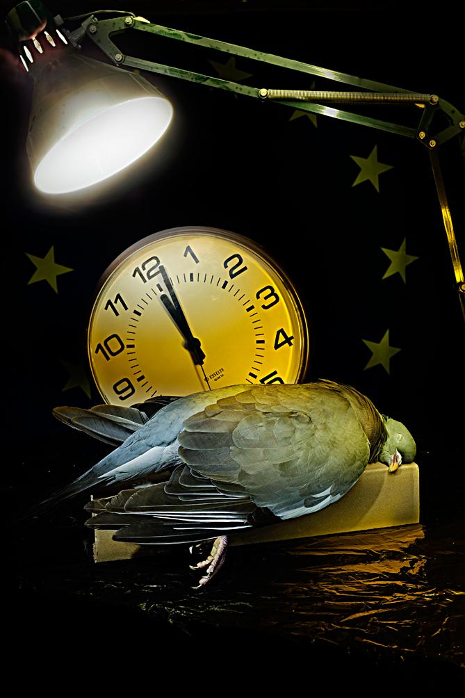 Belyst-duva-med-klocka