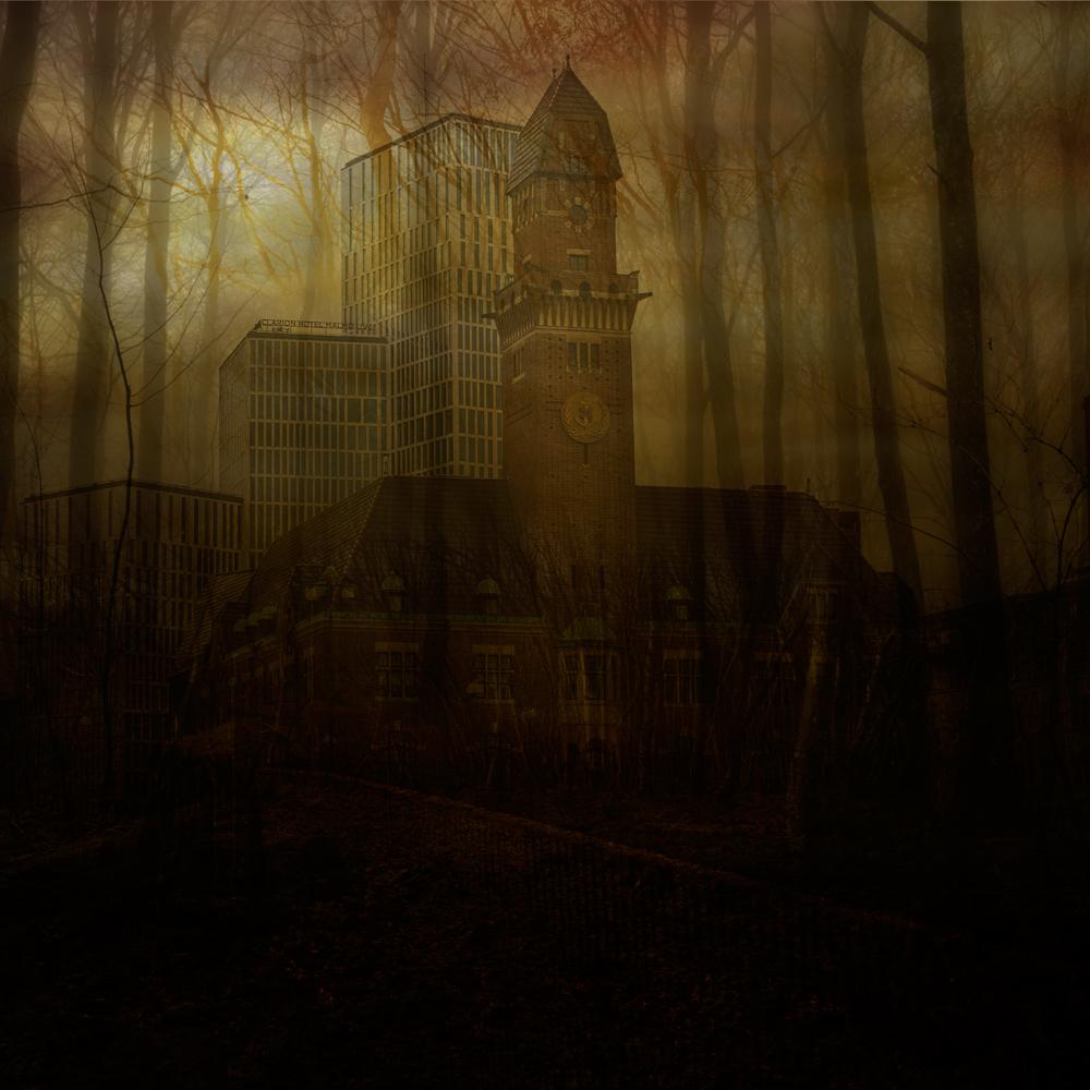 sol-genom-skog,med-hus,3