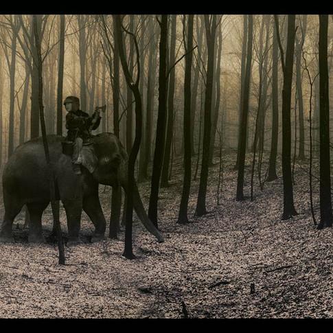 Min elefant och jag.