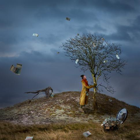 Hundrakronorsträdet
