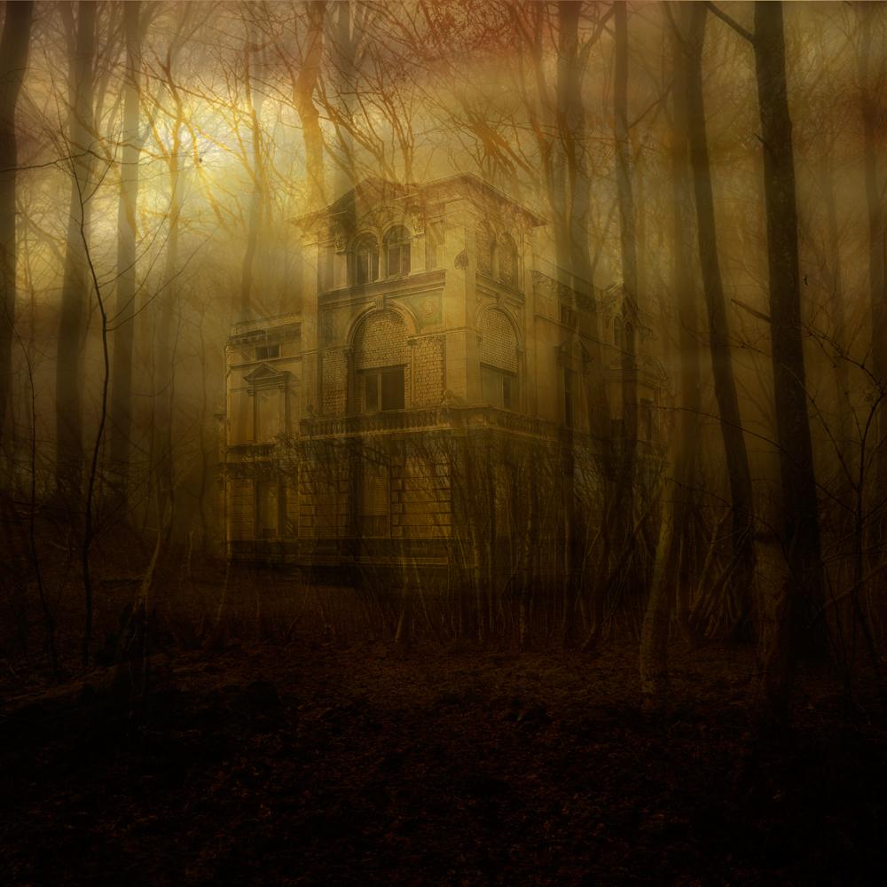sol-genom-skog,med-hus,2