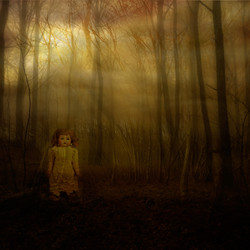 sol-genom-skog,docka