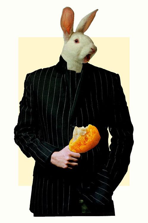 Rabbit shouldn't eat cicken