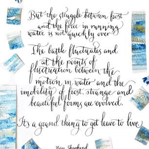 Modern Calligraphy - Nan Shepherd