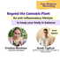 Beyond Cannabis: An Anti-inflammatory Lifestyle to Keep Your Body in Balance [Intro Webinar]