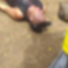 DOBLE HOMICIDIO EN MENOS DE 24 HORAS EN SUCRE