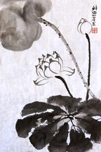 Lotus02.jpg