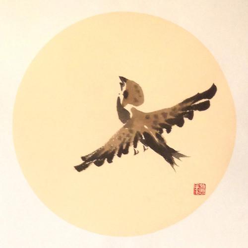 Sparrow14.jpg