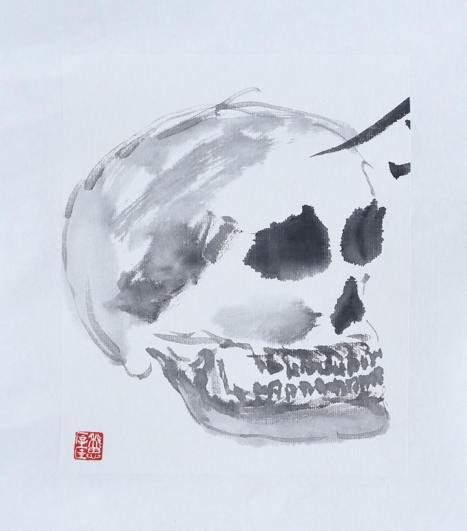 Skull08.JPG