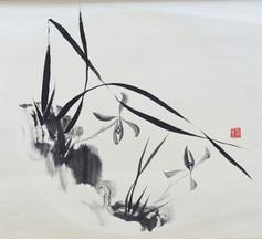 Orchid04.JPG