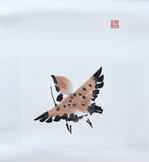 Sparrow11.JPG