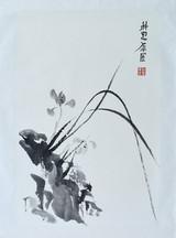 Orchid01.JPG