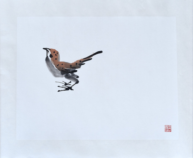Sparrow04.JPG