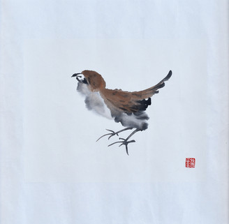 Sparrow01.JPG