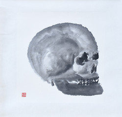 Skull06.JPG