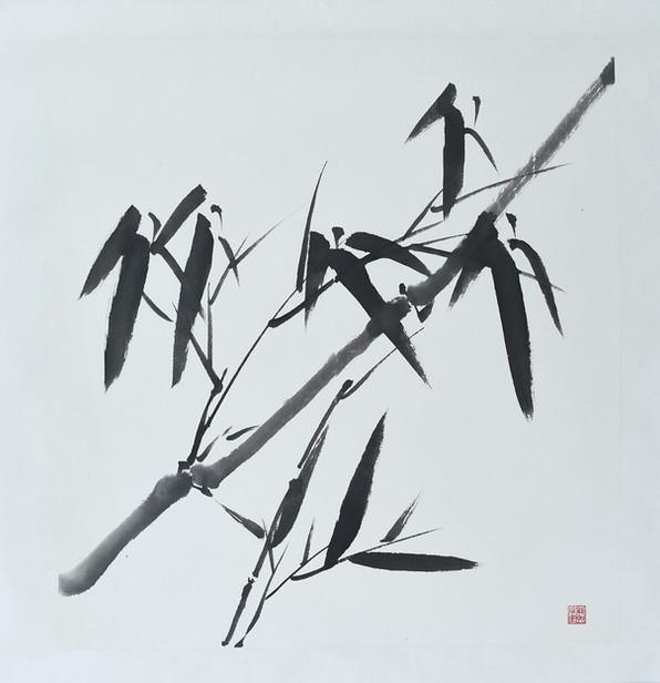 Bamboo04.JPG