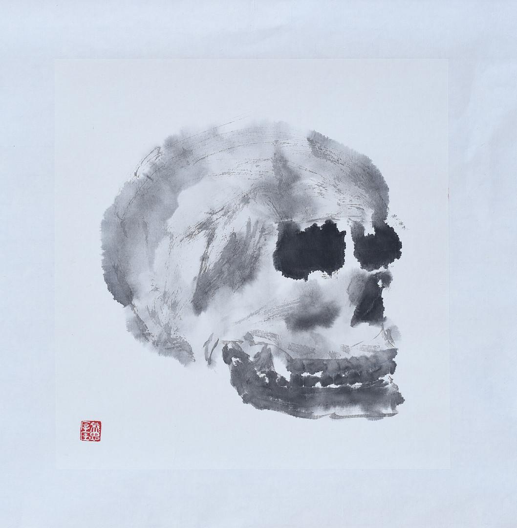 Skull07.JPG