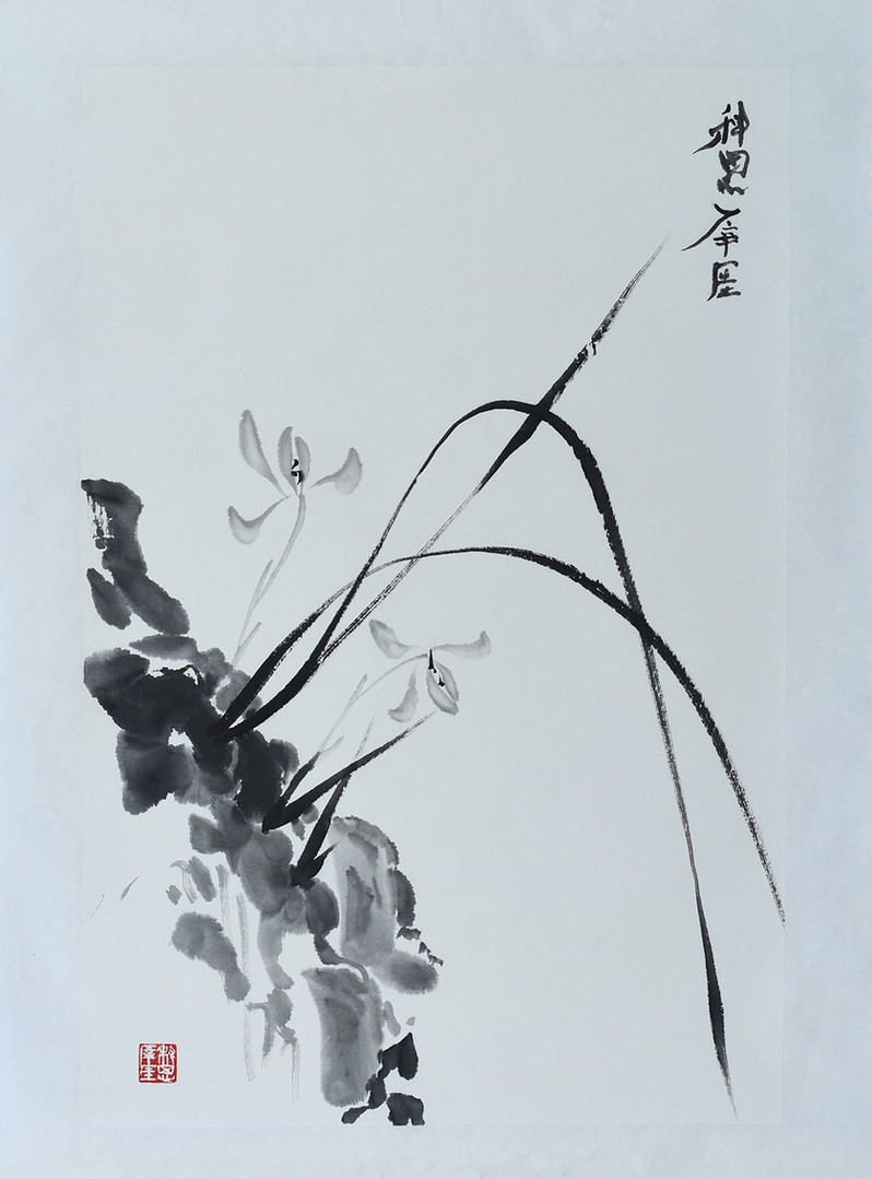 Orchid02.JPG
