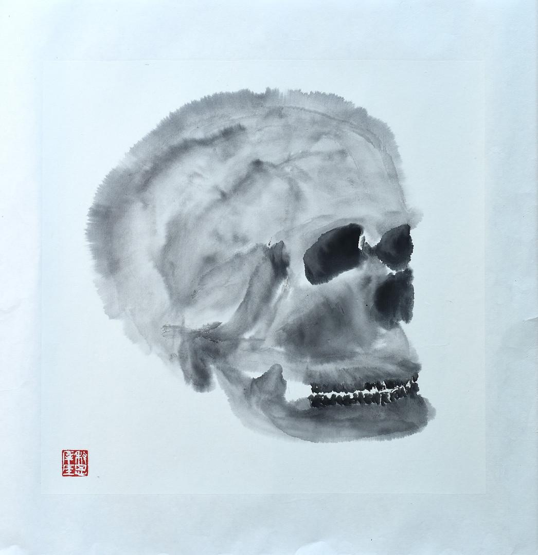 Skull04.JPG