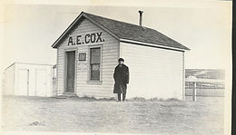 A.E. Cox Land Agency