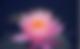 スクリーンショット 2018-03-28 0.30.32.png