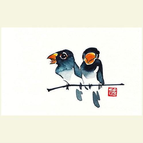 Love Birds I (set of 5 greeting cards)