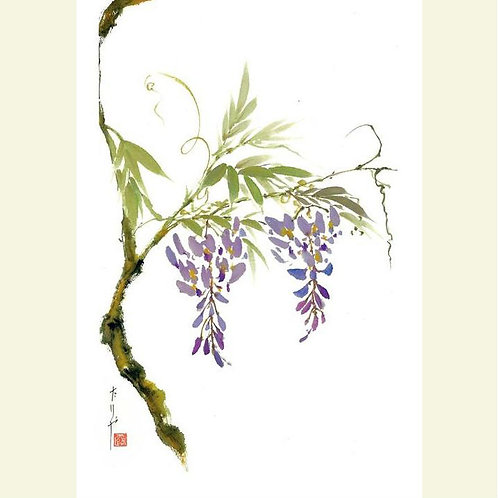 Wisteria (set of 5 greeting cards)