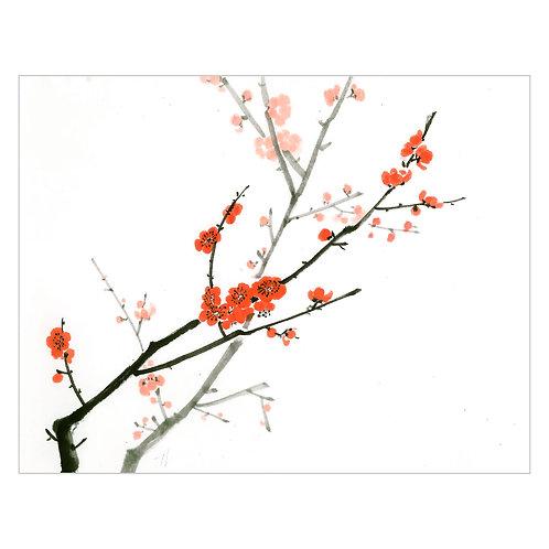 'blossom II'