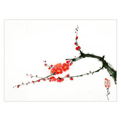 'blossom I'