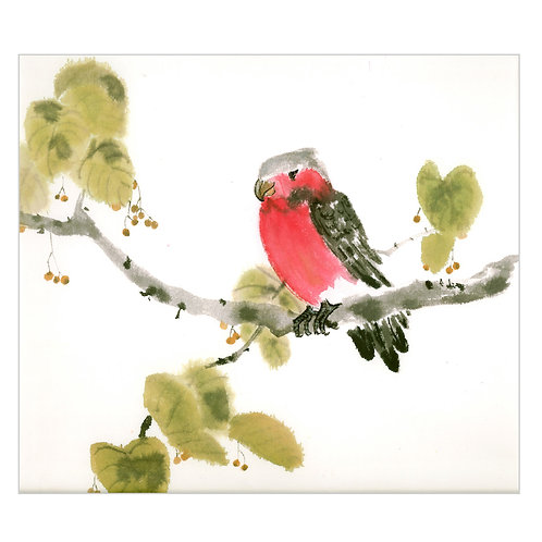 'red parrot' SOLD