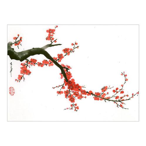 'Blossom III'