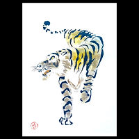 tiger sq.jpg